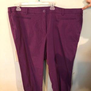 Lane Bryant Size 28 pants NEW